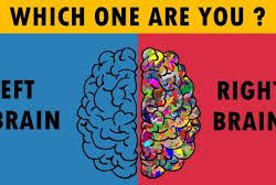 Which one are you? Left brain or right brain?