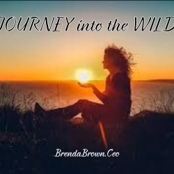 Journey into the Wild Header
