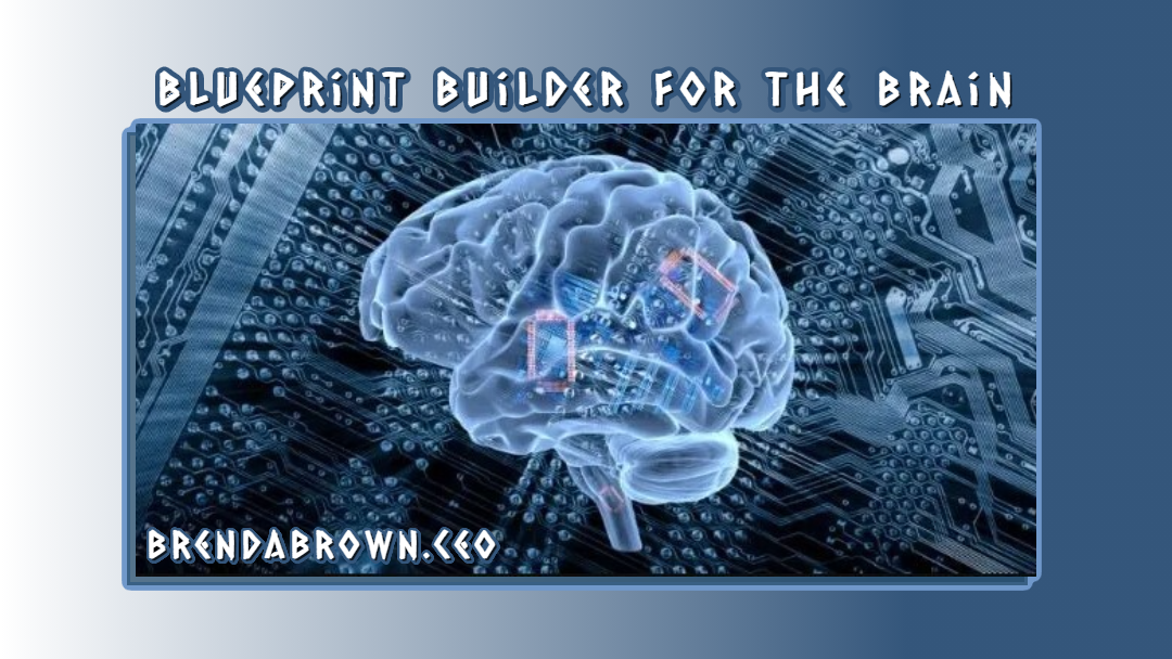 Blueprint builder for the brain image, cover image